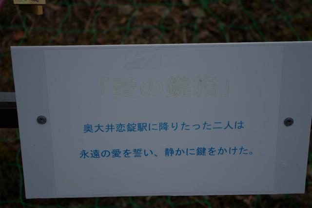 大井川おこじょ24