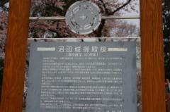 2012沼田城02