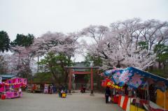 2012沼田城10