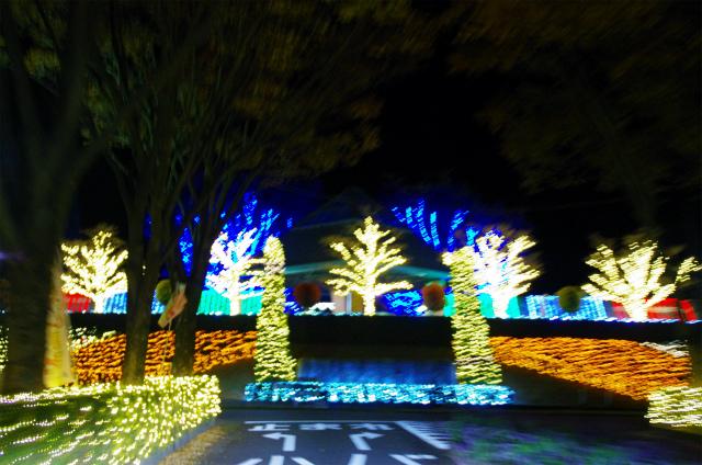 2012年度ぐんまフラワーイルミ02