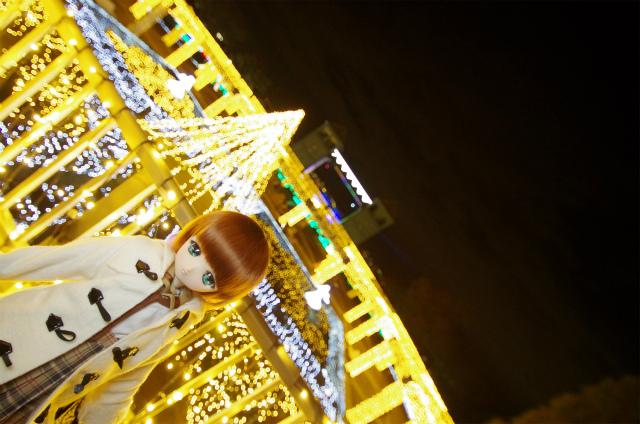 2012年度ぐんまフラワーイルミ32