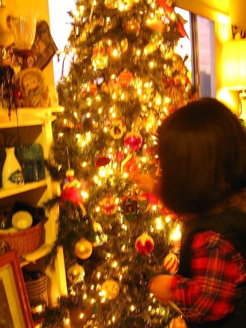 2011christmas tree 010