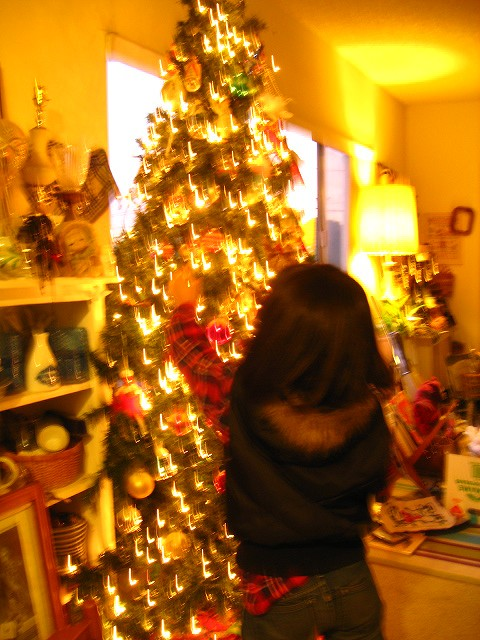 2011christmas tree 007