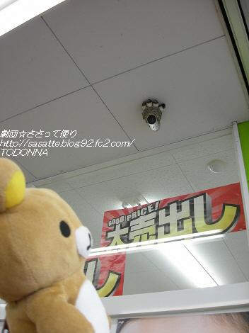 DSCN7126-s1.jpg