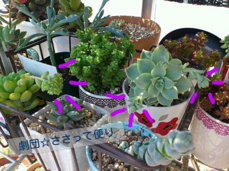labelbox_20120327171544.jpg