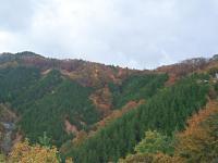 10-26平谷峠頂上山々2