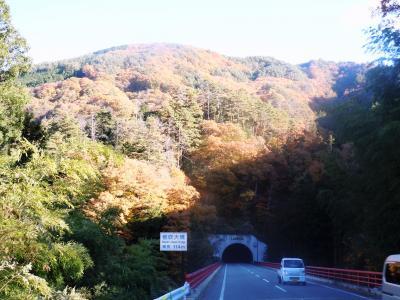 阿南町トンネル紅葉