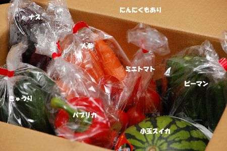 20100810hurano.jpg
