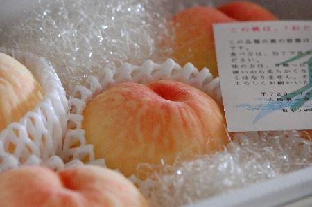 20100815momo.jpg