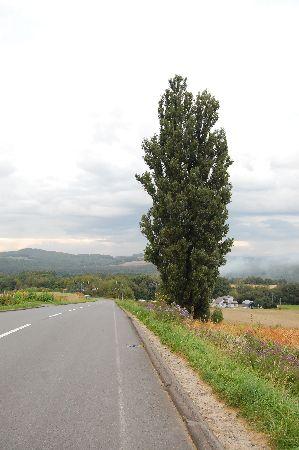20101011biei5.jpg