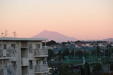 20101102fuji.jpg