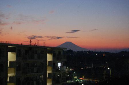 20101116fuji.jpg