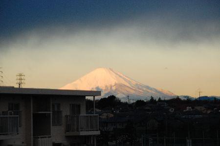 20101208fuji.jpg