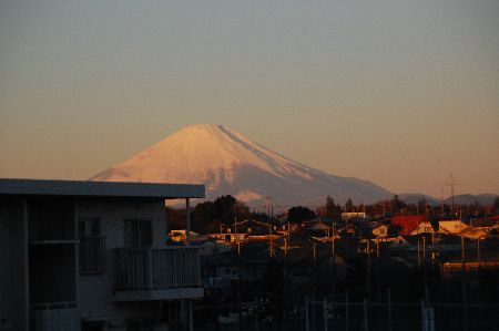 20101210fuji.jpg