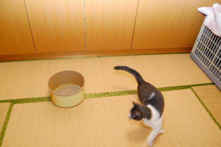 20111127miikun3.jpg