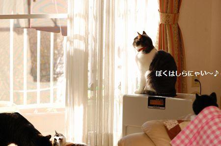 20111220miikun.jpg