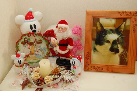 20111221クリスマス