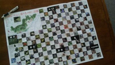 北山公園の北山公園の生き物ミニ図鑑
