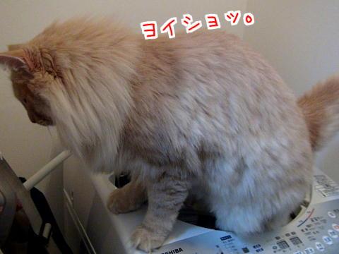sato93_20121215172009.jpg