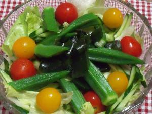 オクラのせ野菜サラダ