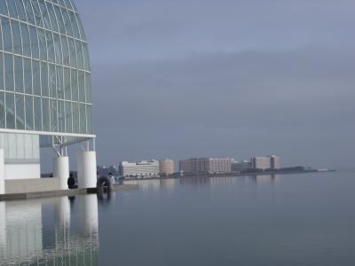 水族館から望むディズニーリゾート