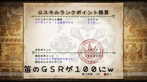 1110笛GSR