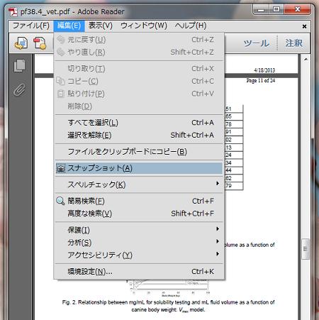 PDF拡大印刷1スナップショット