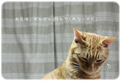 sayomaru2-766.jpg