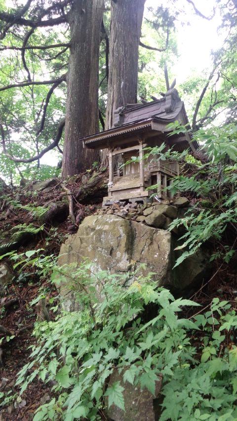 blog-kawanori1.jpg