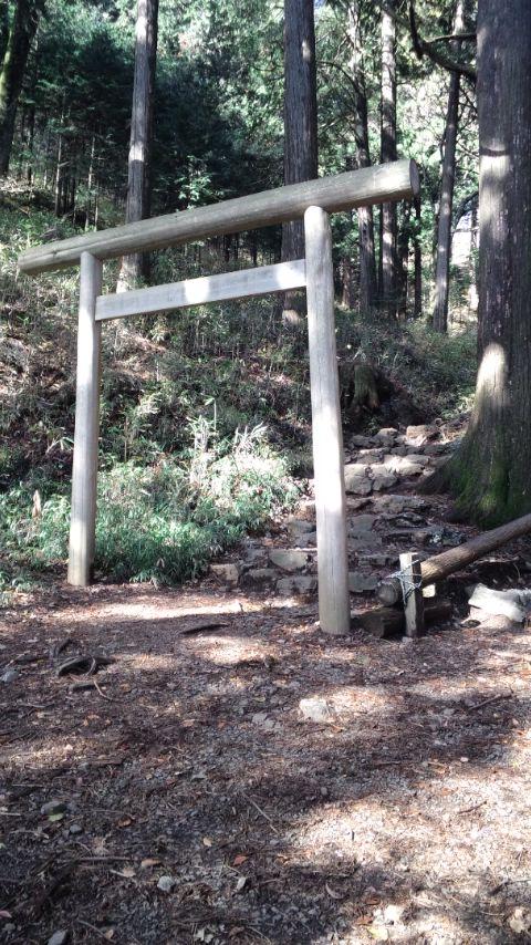 blog-toriii.jpg