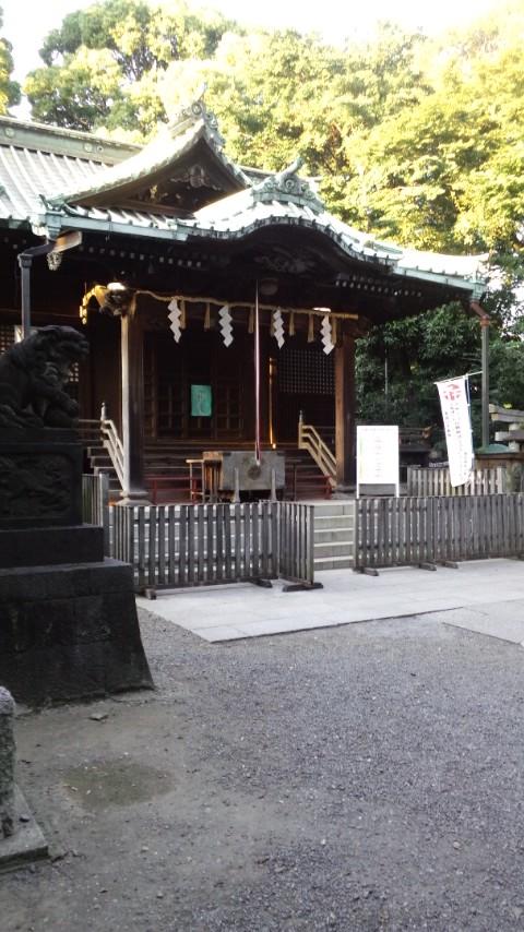blog-yoyohachi.jpg