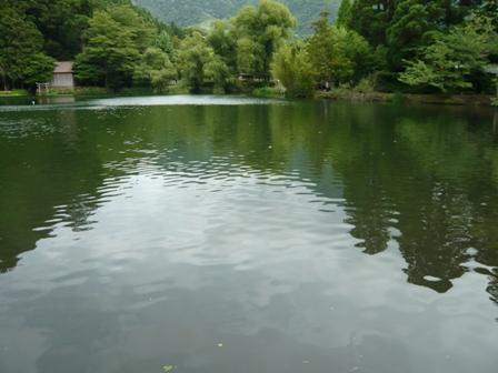 ザッツ金鱗湖