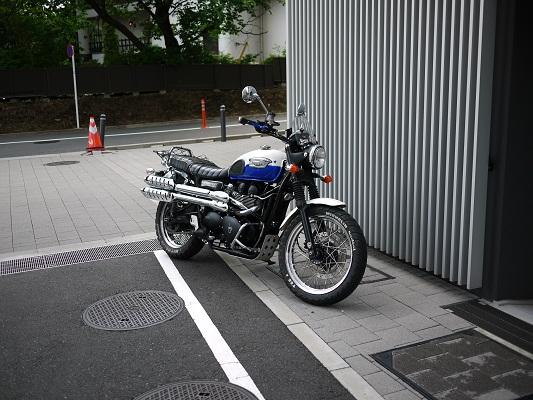 P1180870.jpg