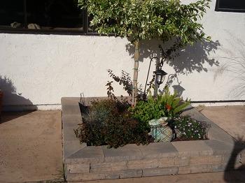 201011115.jpg