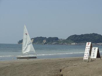 20118111.jpg