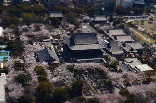 東京ゲートブリッジバスツアー20120408_04