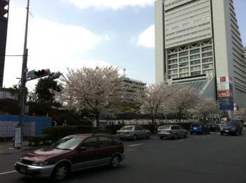 20110411_01.jpg
