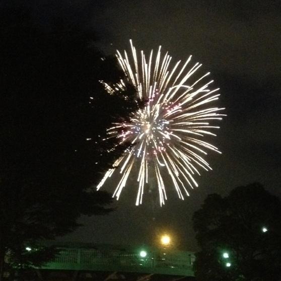 2012/08/01 横浜花火