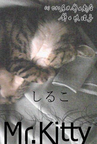 鈴木映理子作・猫ポストカードのねこぽす「Mr.Kitty しるこ」(笑)