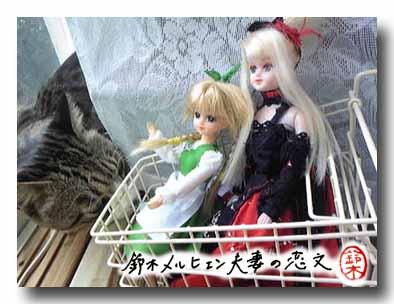 お人形用カートでお出かけ。前方に見えますは猫ー、猫でございます