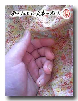 買って来た花柄布と嫁の左手。よく手が子どもっぽいといわれるメルヒェン嫁。