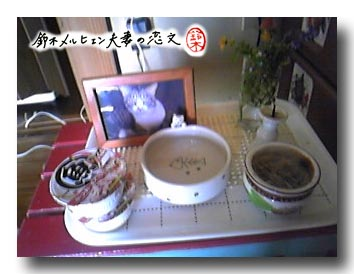 1階リビングの猫の簡易仏壇。遺影になってる写真は嫁が数年前撮影したもの。