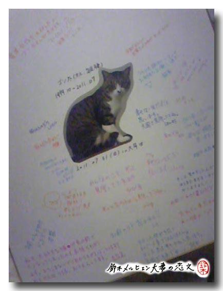 大牟田こみけ会場のスペースにて募集した猫の追悼寄せ書き。こんなに集まりました!