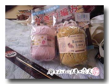 ダイソーにて、かぎ針編み初心者セットと銘打って購入。本当に作れるの・・・?