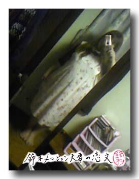 水玉+花柄ニットのジャンパースカート、製作過程で試着。この下にフリルがつきます。