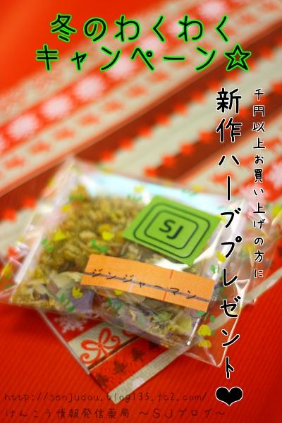 千寿堂薬局 冬のわくわくキャンペーン『2010』