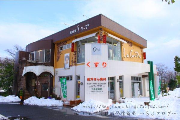 千寿堂薬局と雪