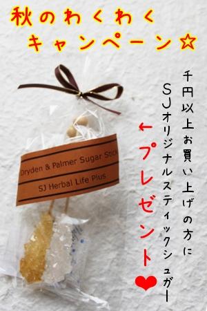 千寿堂薬局 秋のわくわくキャンペーン『2010』