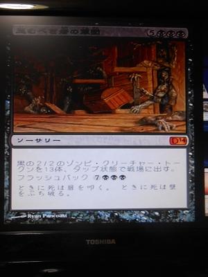 DSCN7648.jpg