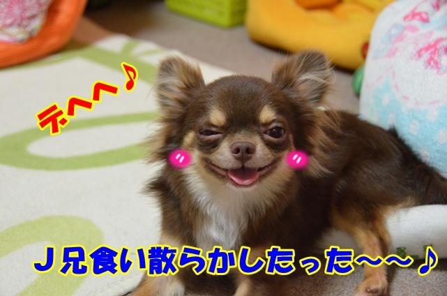 DSC_7991.jpg